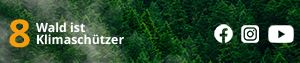 Wald ist Klimaschützer